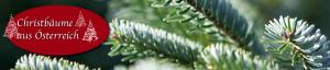 neues-logo-weihnachtsbaum2013