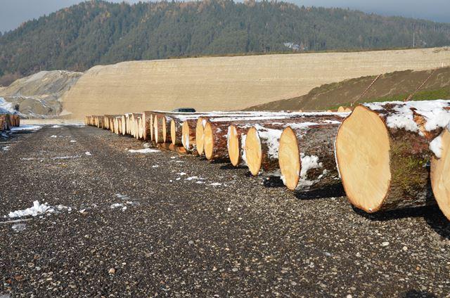 Tirol: Nadelwertholzsubmission 2018 – Fragen und Antworten