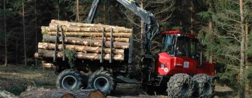 Waldbewirtschaftung