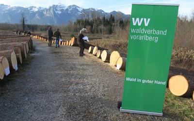 """Spitzenpreise """"Fichte € 600.-/fm"""" bei der Vorarlberger Nadelwertholzsubmission 2015"""
