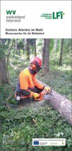 Sicheres Arbeiten im Wald