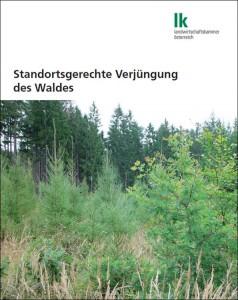 Standortgerechte Verjüngung des Waldes