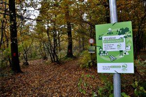 Das PEFC-Waldschild am Eingang schafft das Bewusstsein, dass nachhaltige Holz- und Papierprodukte aus diesem Wald stammen.