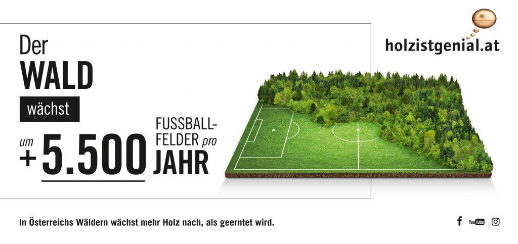 holz-ist-genial-sujet-fussballfeld-c-proholz-austria