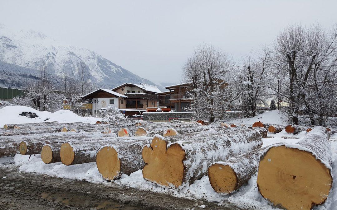 Wertholzsubmission Tirol 2018 – Losverzeichnis